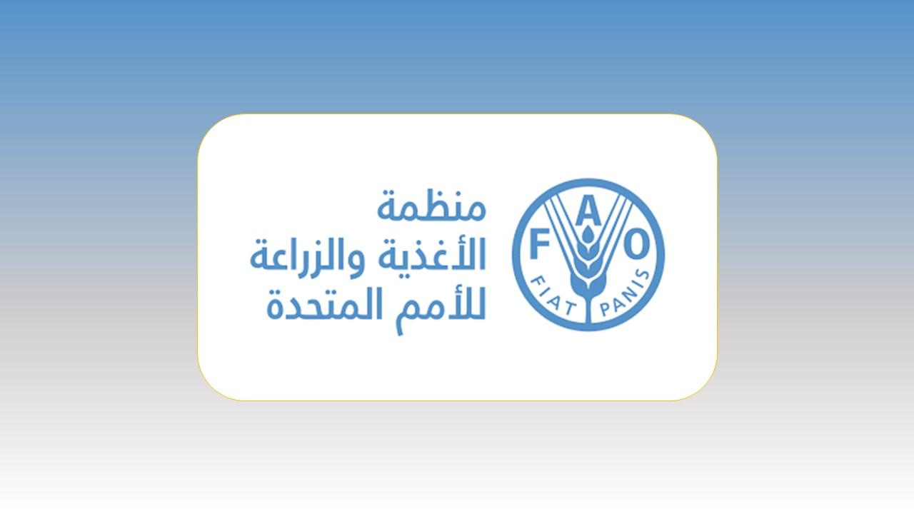وظائف منظمة الأغذية والزراعة فاو مصر
